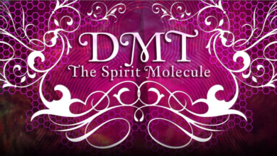 Photo of DMT – la molécula espiritual