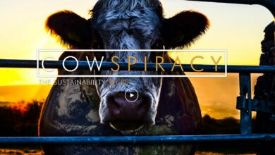 Photo of Cowspiracy