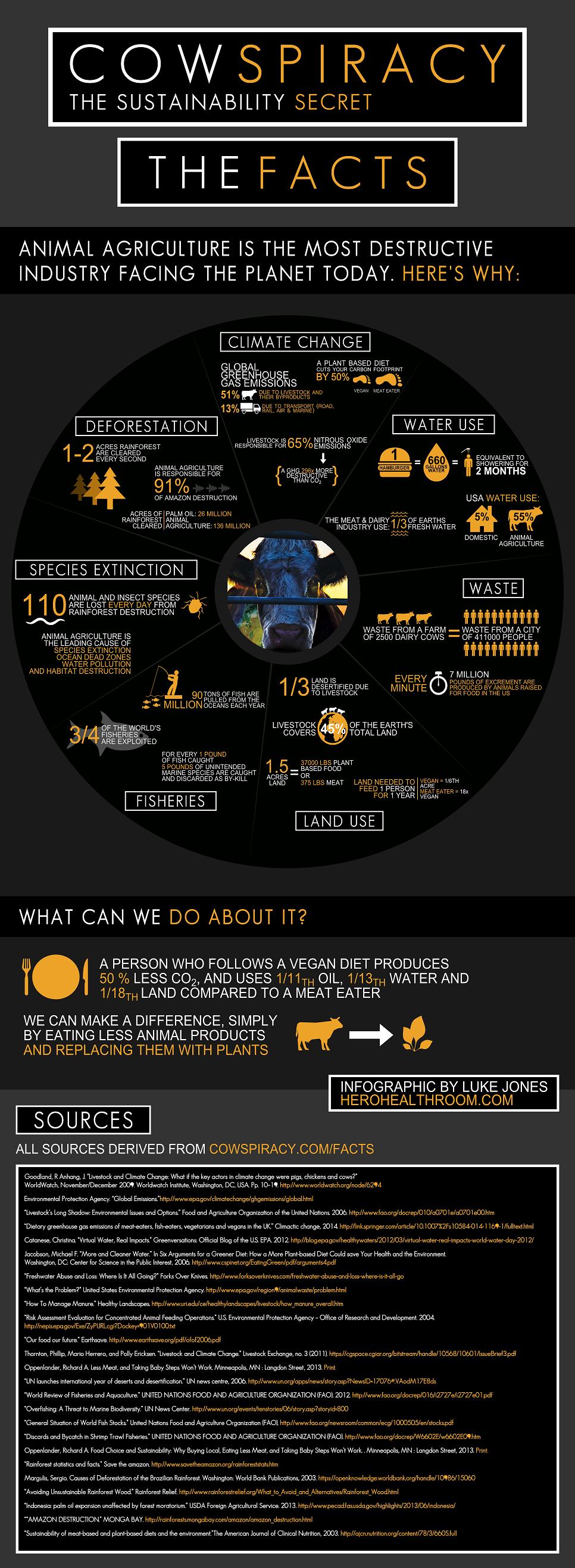 luke-jones-cowspiracy-infographic-imperial-updated