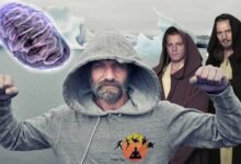 Photo of Las mitocondrias, Star Wars y el método Wim Hof